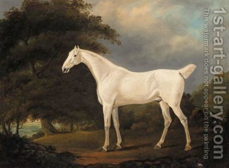 A Grey Hunter In A Wooded Landscape by Edwin Cooper - Reproduction Oil Painting