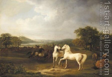 Zwei Hengste Und Andere Pferde In Einer Weiten Landschaft (Two Arabian Stallions And Other Horses In An Extensive Landscape) by Adam Albrecht - Reproduction Oil Painting