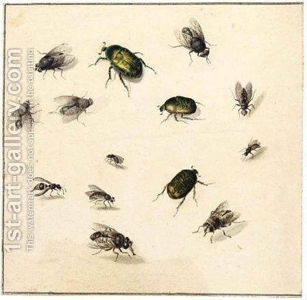 Sheet Of Studies Of Flies And Beetles by (after) Marie Geertruida Snabille - Reproduction Oil Painting