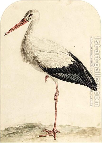 A Stork by Jan Christiaan Sepp - Reproduction Oil Painting