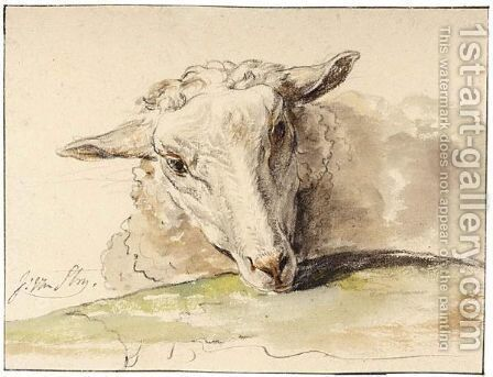 Study Of The Head Of A Sheep by Jacob van Strij - Reproduction Oil Painting