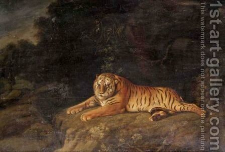 Tiger by (after) Stubbs, George - Reproduction Oil Painting