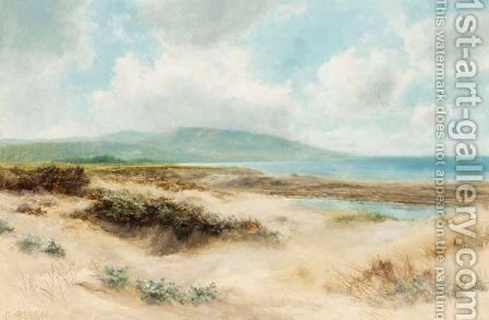 Sand Dunes by Daniel Sherrin - Reproduction Oil Painting