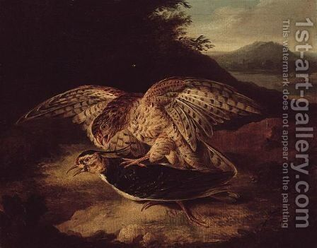 A Hawk And Plover by (after) Howitt, Samuel - Reproduction Oil Painting