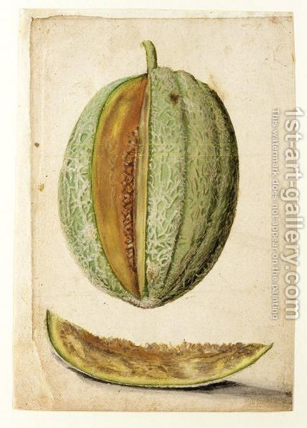 Study Of A Melon With A Slice Cut Out by (after) Le Moyne, Jacques (de Morgues) - Reproduction Oil Painting