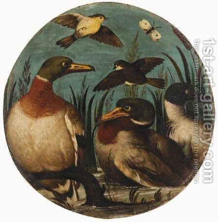 Still Life With Ducks, Finches And A Butterfly Together In A River Landscape by Italian School - Reproduction Oil Painting