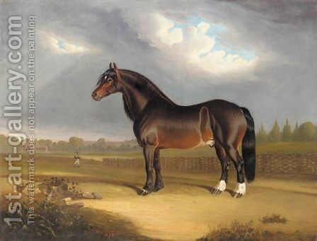 Lord Bolton's Pride Of England by Benjamin Snr Herring - Reproduction Oil Painting