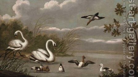 A River Landscape With Swans And Ducks by (after) Pieter Casteels III - Reproduction Oil Painting