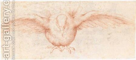 A Dove by Cremonese School - Reproduction Oil Painting