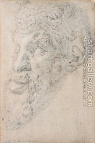 Head Of Pan, After The Antique by Rubens - Reproduction Oil Painting
