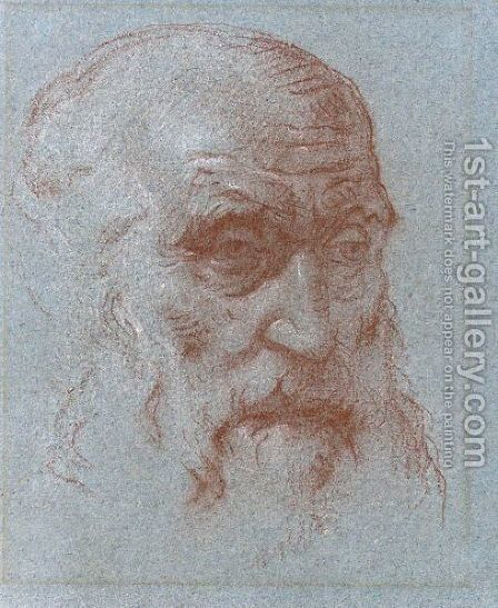 Study Of The Head Of A Bearded Man by Giovanni Battista Tiepolo - Reproduction Oil Painting