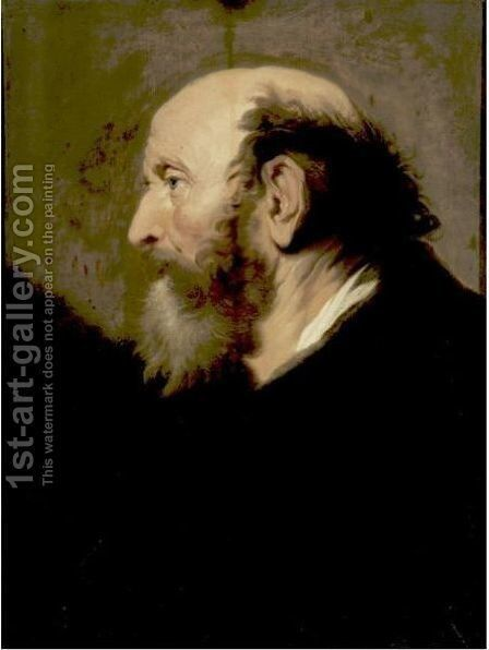 Profile Portrait Of A Bearded Man by Jacob Adriaensz Backer - Reproduction Oil Painting