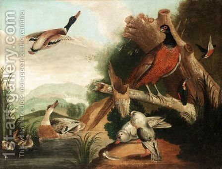 Still Life With Ducks, Kingfishers, Doves And A Pheasant In A River Landscape by (after) Marmaduke Cradock - Reproduction Oil Painting