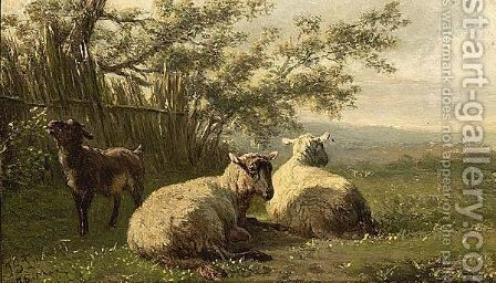 Schapen by Jan Bedijs Tom - Reproduction Oil Painting