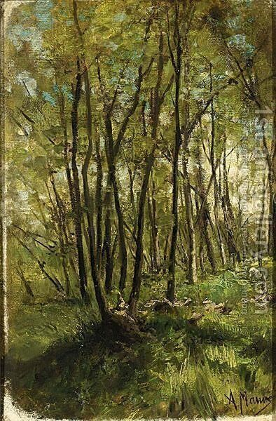 A Forest Landscape In Springtime by Anton Mauve - Reproduction Oil Painting