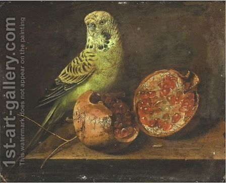 Still Life With A Parrot And A Pomegranate by Continental-American School - Reproduction Oil Painting