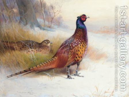 A Pair Of Pheasants In The Snow by Archibald Thorburn - Reproduction Oil Painting