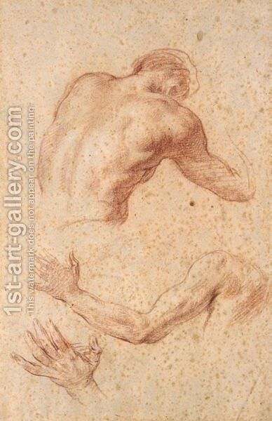 Anatomical Studies Of A Male Torso, Arm And Hand by Allan Ramsay - Reproduction Oil Painting