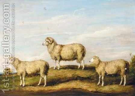 A Dartmoor Ram, Ewe And Wether by James Ward - Reproduction Oil Painting