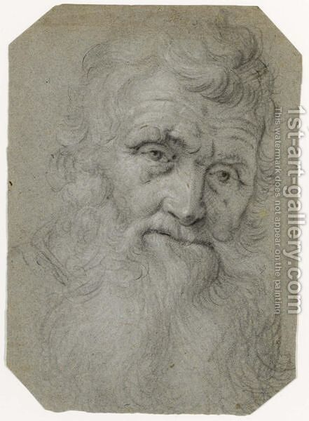 Study Of The Head Of A Bearded Man by Dutch School - Reproduction Oil Painting