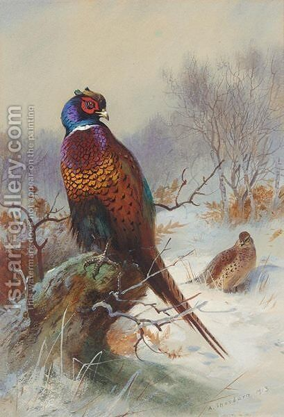 A Pair Of Pheasants 2 by Archibald Thorburn - Reproduction Oil Painting