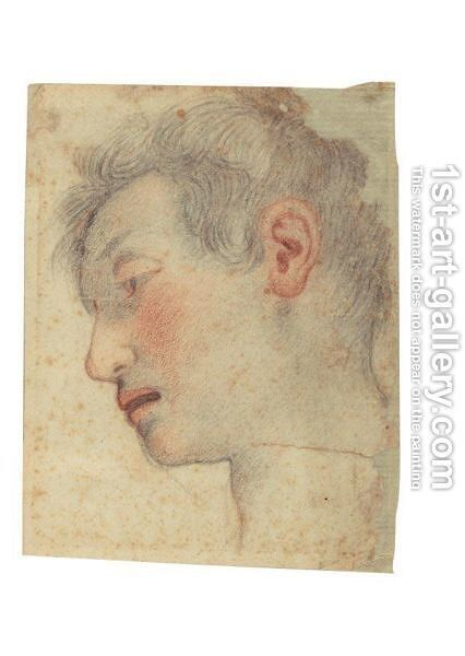 Study Of A Head by (after) Santi Di Tito - Reproduction Oil Painting