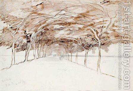 Acacia Avenue, Gizah by Edward Lear - Reproduction Oil Painting