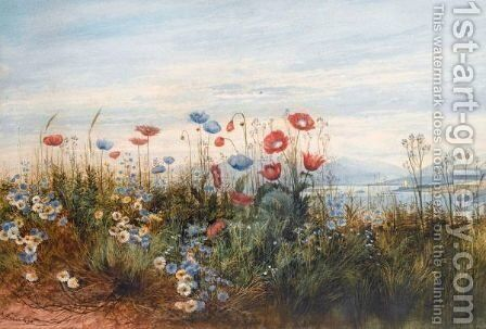 A Poppyfield With A View Of Doe Castle, Co.Donegal by Andrew Nicholl - Reproduction Oil Painting