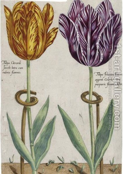Tulips by Crispijn Van De The Younger Passe - Reproduction Oil Painting