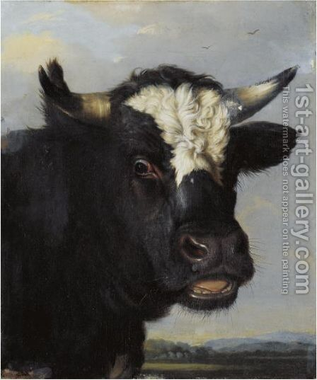 Head Of A Bull by (after) Paulus Potter - Reproduction Oil Painting