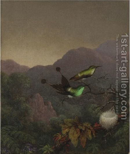 Racket-Tail, Brazil by Martin Johnson Heade - Reproduction Oil Painting
