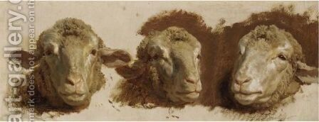 Study Of Three Sheep Heads by Auguste Bonheur - Reproduction Oil Painting