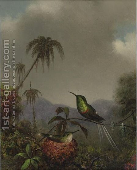 Two Thorn-Tails (Langsdorffs Thorn-Tail, Brazil) by Martin Johnson Heade - Reproduction Oil Painting