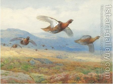 A Covey Of Grouse In Flight by Archibald Thorburn - Reproduction Oil Painting