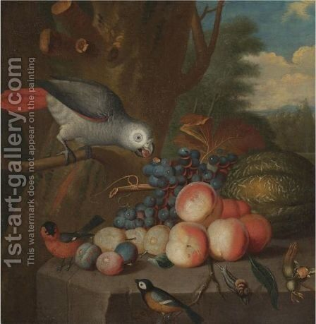 A Still Life With A Parrot And Other Birds, Grapes, Plums, A Watermelon, Peaches And A Snail On A Stone Ledge by (after) Jacob Bogdani - Reproduction Oil Painting