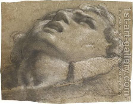 Study Of The Head Of A Young Man by Annibale Carracci - Reproduction Oil Painting
