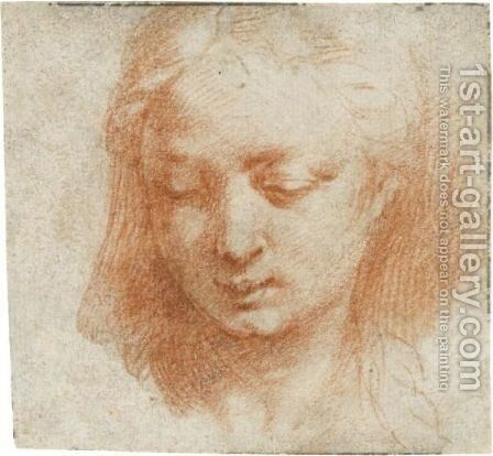 The Head Of A Woman, Looking Down To The Left by Girolamo Francesco Maria Mazzola (Parmigianino) - Reproduction Oil Painting