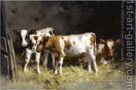 Calves At Rest by David Gauld - Reproduction Oil Painting