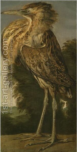A Bittern (Roerdomp) by Cornelis van Lelienbergh - Reproduction Oil Painting