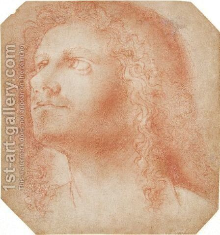 Head Of A Man by Ecole Italienne - Reproduction Oil Painting