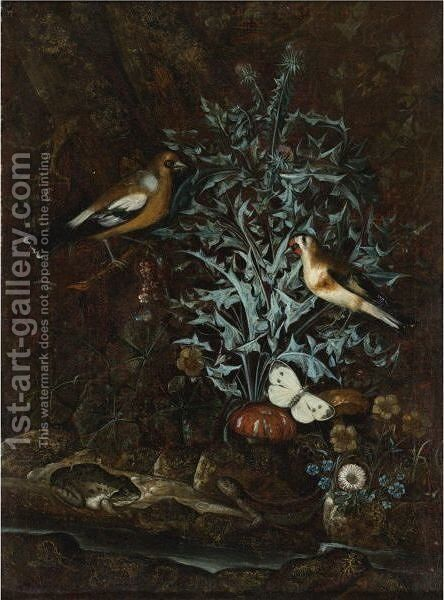 Song Birds, Butterflies, Thistles, Flowers, And Reptiles By A Stream by (after) Mathias Withoos - Reproduction Oil Painting