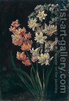 Still life of flowers by - Unknown Painter - Reproduction Oil Painting