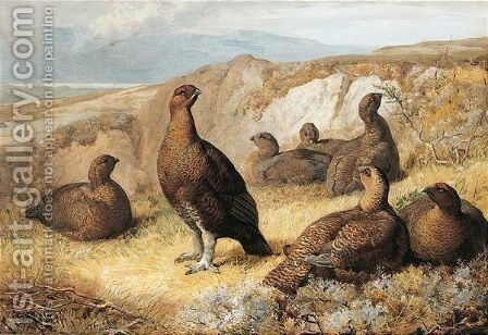 Grouse On The Moor by Archibald Thorburn - Reproduction Oil Painting