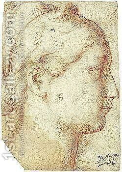 A Head In Profile by (after) Girolamo Francesco Maria Mazzola (Parmigianino) - Reproduction Oil Painting