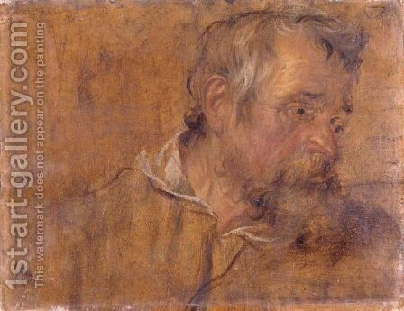 Profile Study Of A Bearded Old Man by (after) Dyck, Sir Anthony van - Reproduction Oil Painting