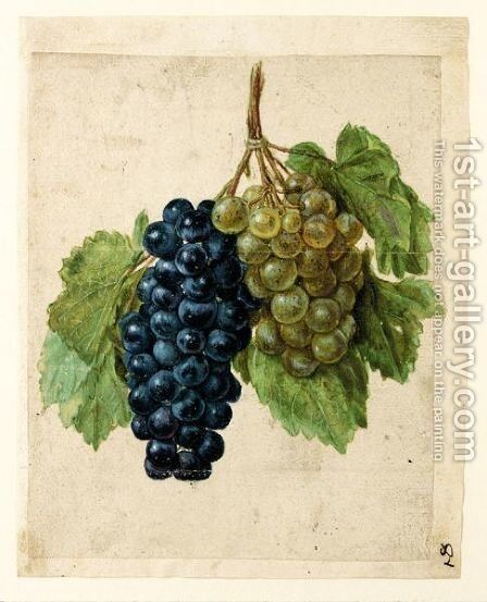 Two Bunches Of Grapes, One Black And One White by (after) Le Moyne, Jacques (de Morgues) - Reproduction Oil Painting
