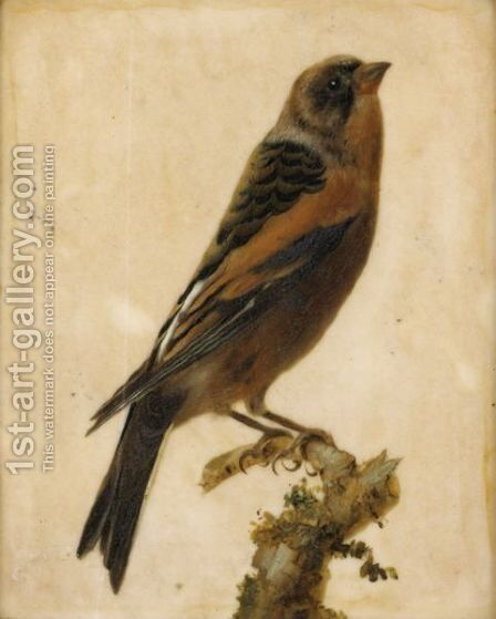 Birds On A Branch by (after) Gerard Van Spaendonck - Reproduction Oil Painting