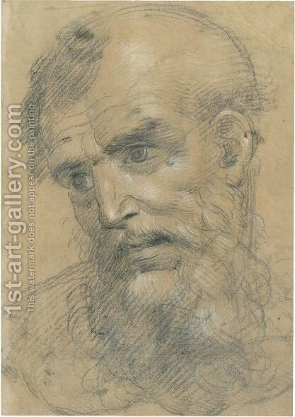 The Head Of A Bearded Man Inclined To The Left by Giovanni Antonio Sogliani - Reproduction Oil Painting