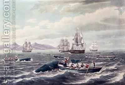 A Shoal of Sperm Whale by (after) Birch, Thomas - Reproduction Oil Painting