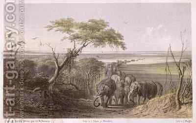 Herd of Elephants on the border of Chad by (after) Bernatz, Johann Martin - Reproduction Oil Painting